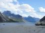 Ošípkach alososoch - Grónsko 2017